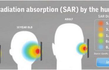 profondeur d'absorption des radiations (SAR) par le cerveau humain, par âge
