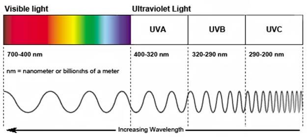 UVA, UVB, UVC - ultraviolet spectrum