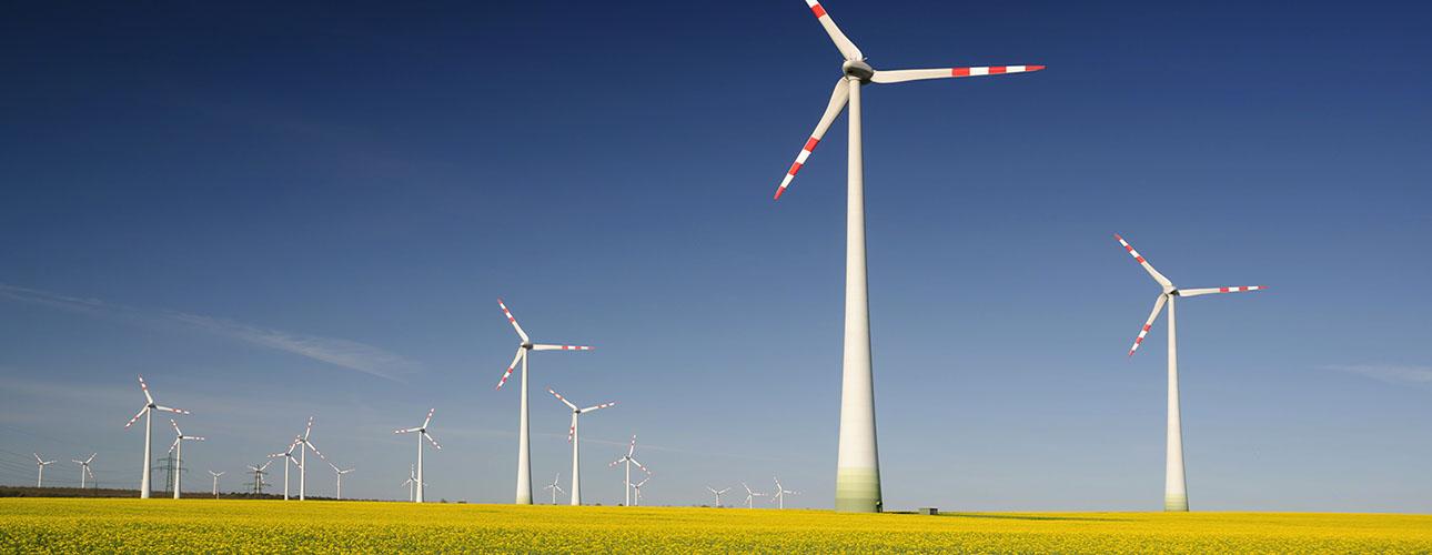 wind turbines parks radiation